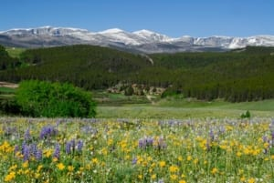 Paradise Guest Ranch - fields and mountains.