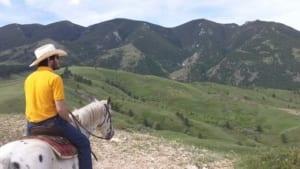 Eatons' Ranch - Wrangler on horseback overlooking a vista.